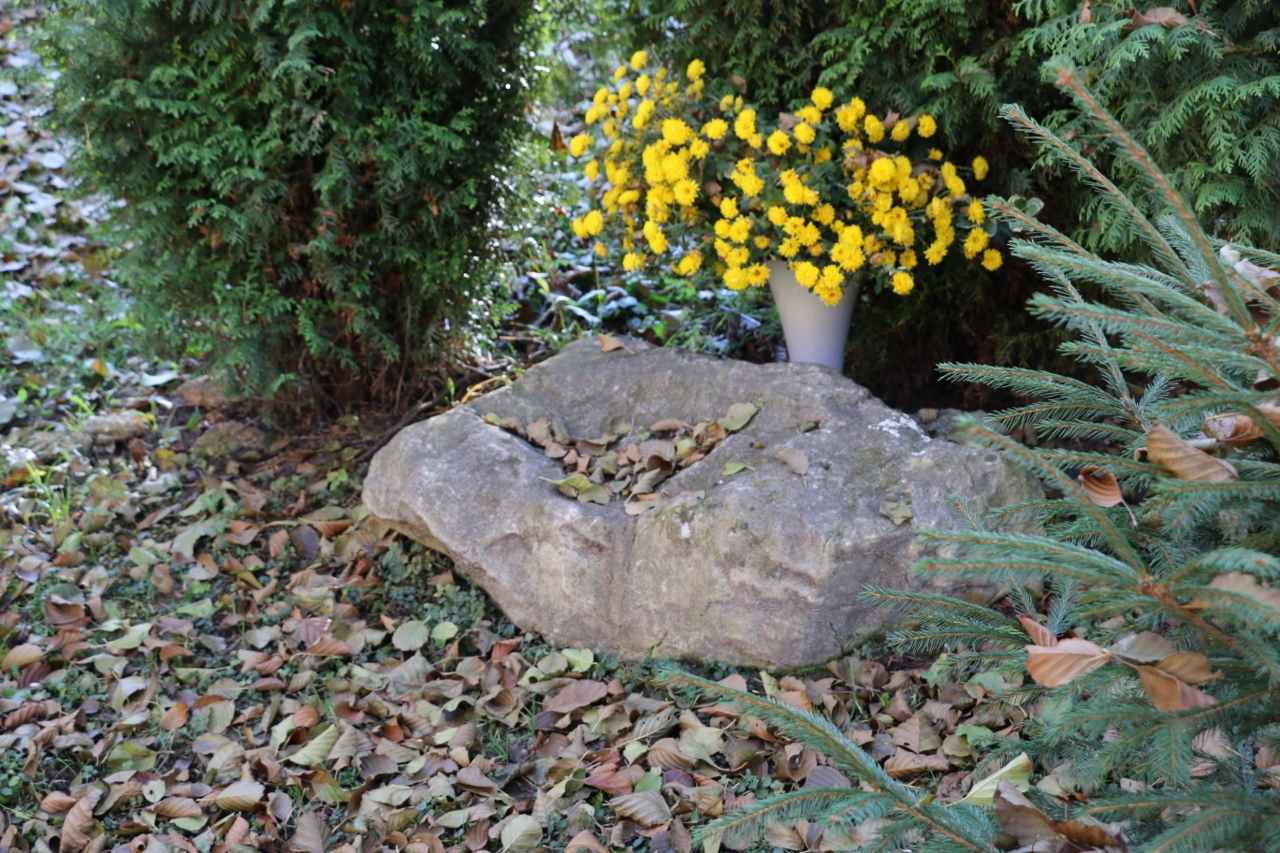 Kamień, na którym wg wierzeń klęczał bł. Wincenty Kadłubek